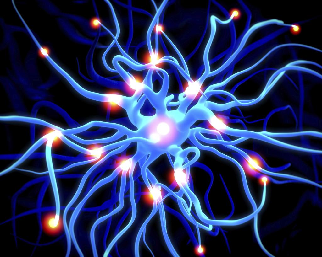 Peripheral Neuropathy  Comprehensive PA