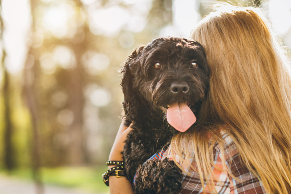 Woman holding dog for chronic pain | Comprehensive Pain Management Center
